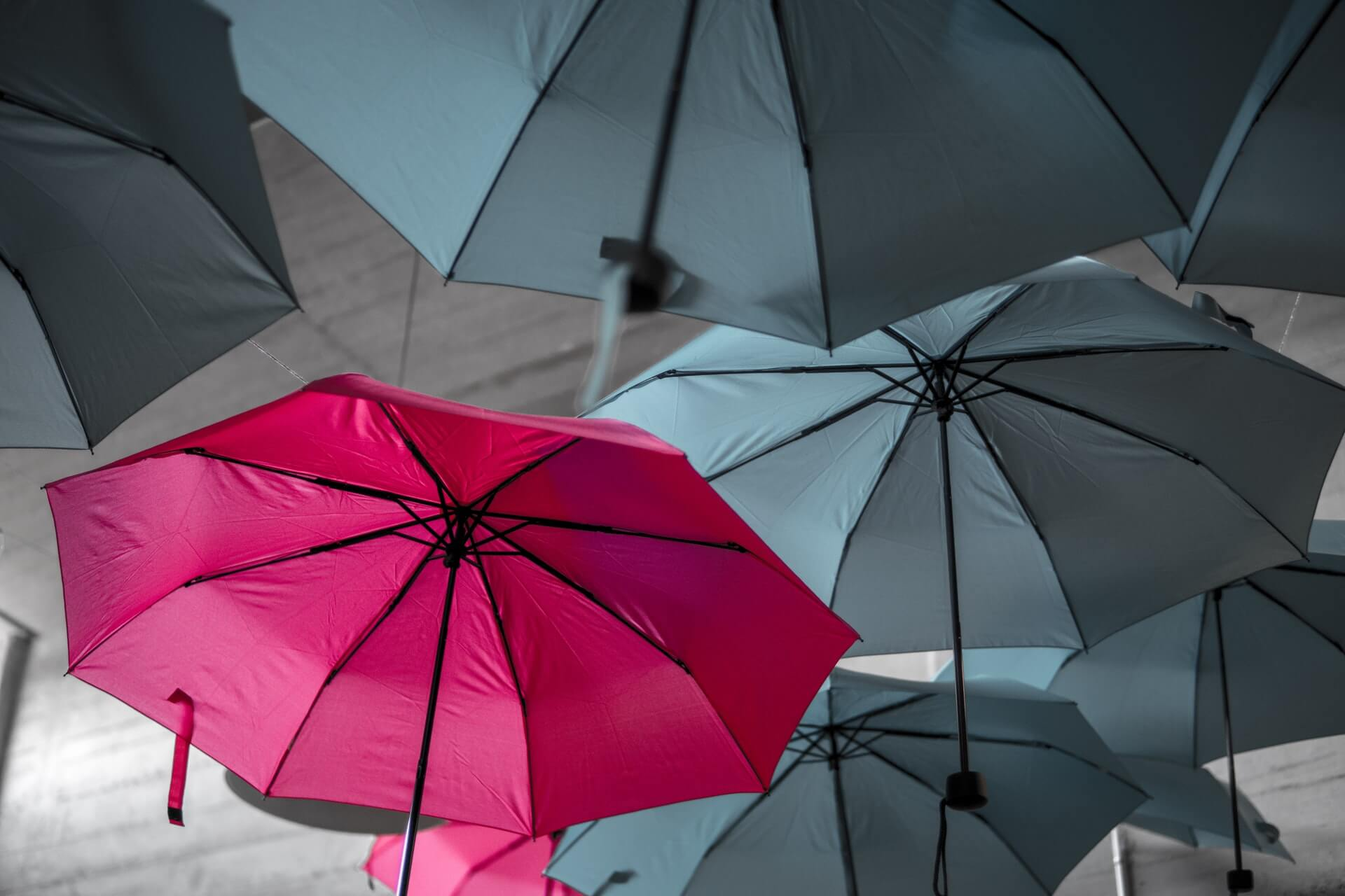 A red umbrella standing out amongst other grey umbrellas